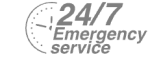 24/7 Emergency Service Pest Control in Gordon Hill, EN2. Call Now! 020 8166 9746